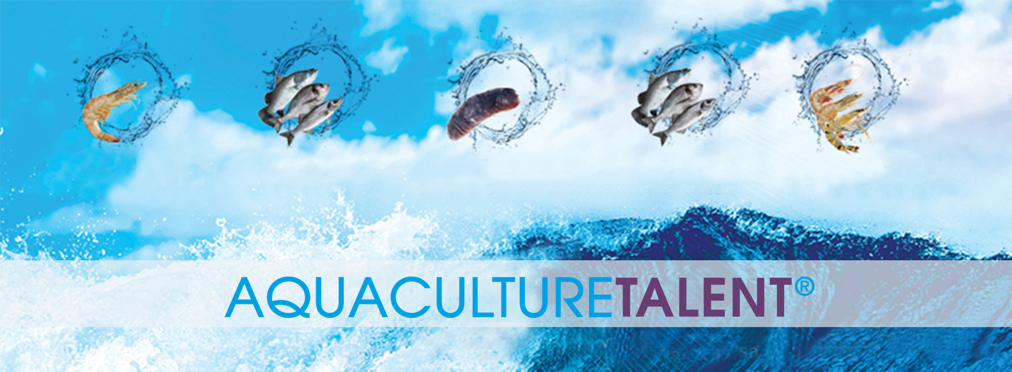 We are recruiting Chief Executive Officer for Saudi Arabia Aquaculture cumpany